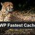 WP Fastest Cache Logo