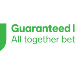 Guaranteed Irish logo